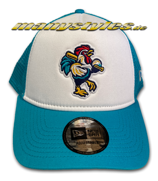 Delmarva Shorebirds MiLB 9FORTY Trucker Cap Sky White Snapback Cap AFrame Curved von New Era